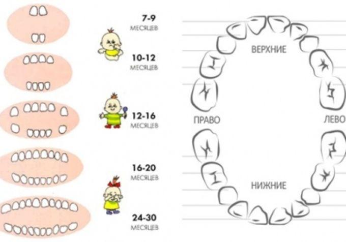 prorezivanie zubov